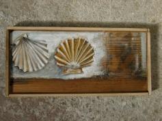 shells, acrylic on wood, 2012